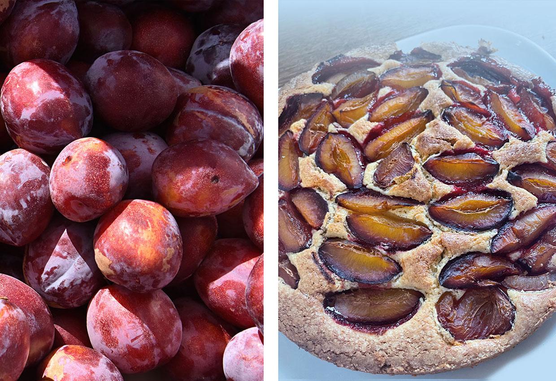 glutenfreier-zwetschgenkuchen-glutenfrei-backen-herbst-pflaumen.jpg