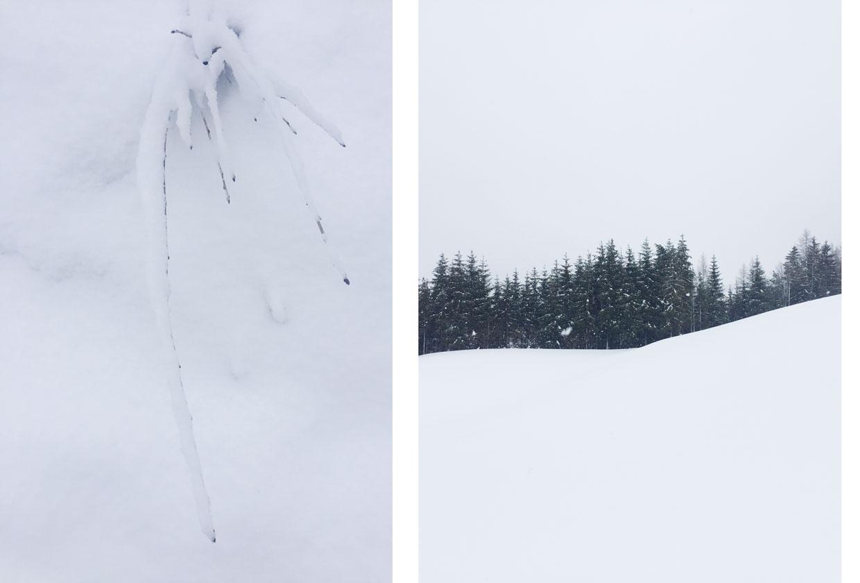 Winter 2019